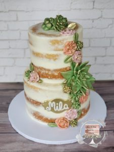 Succulent cake mindy port